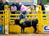 Jr Rodeo-1