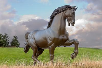 179 Nicol T-Day 2007 - DaVinci's Horse At Meijer Gardens