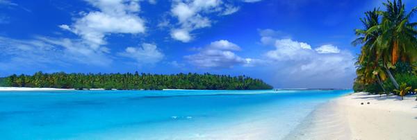 Tropical Panorama