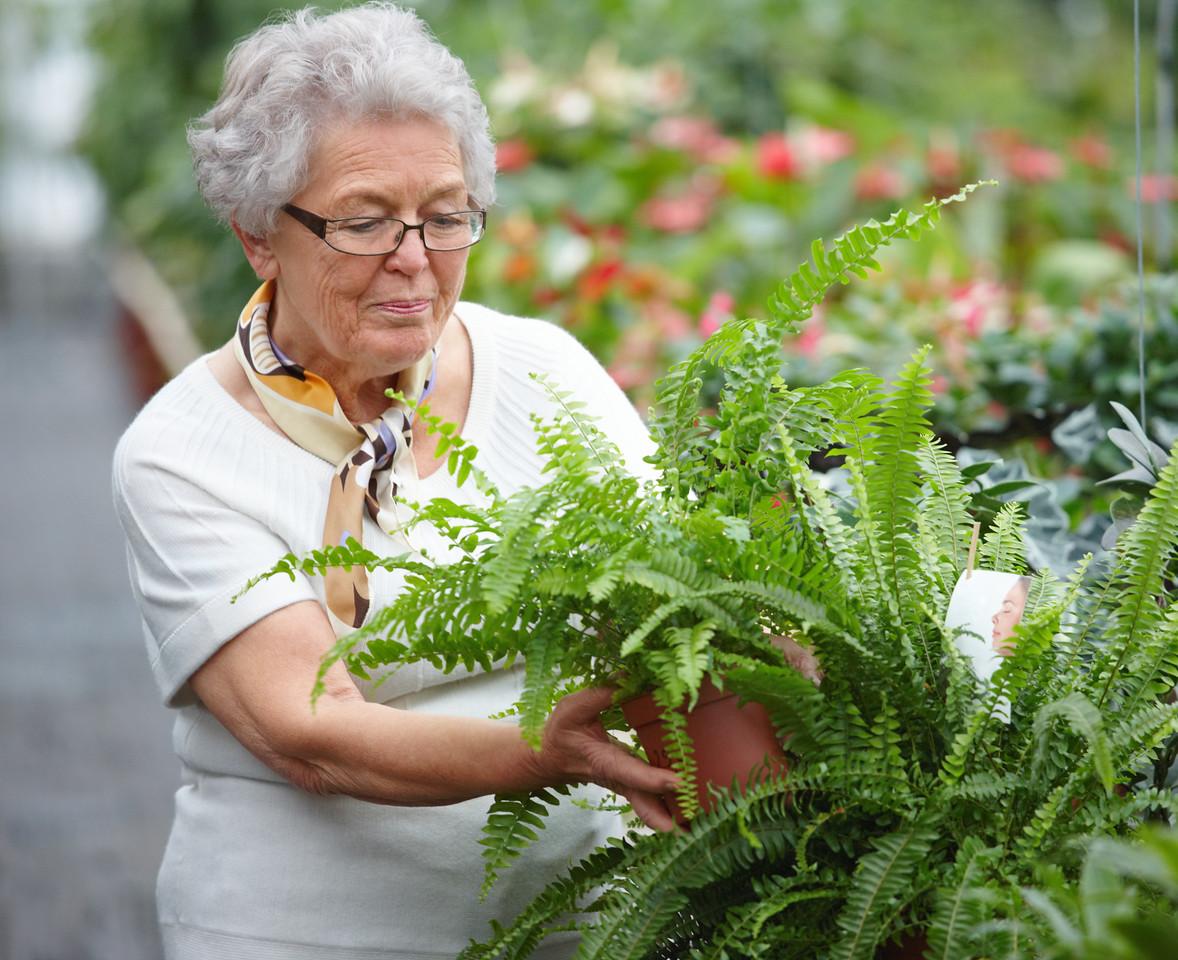 Senior woman doing some gardening