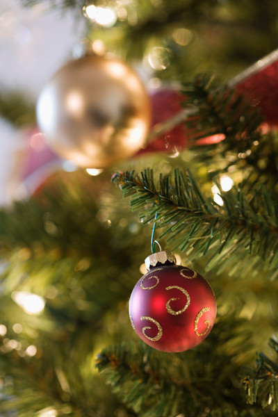 Close up of gold and red ornaments hanging in Christmas tree.
