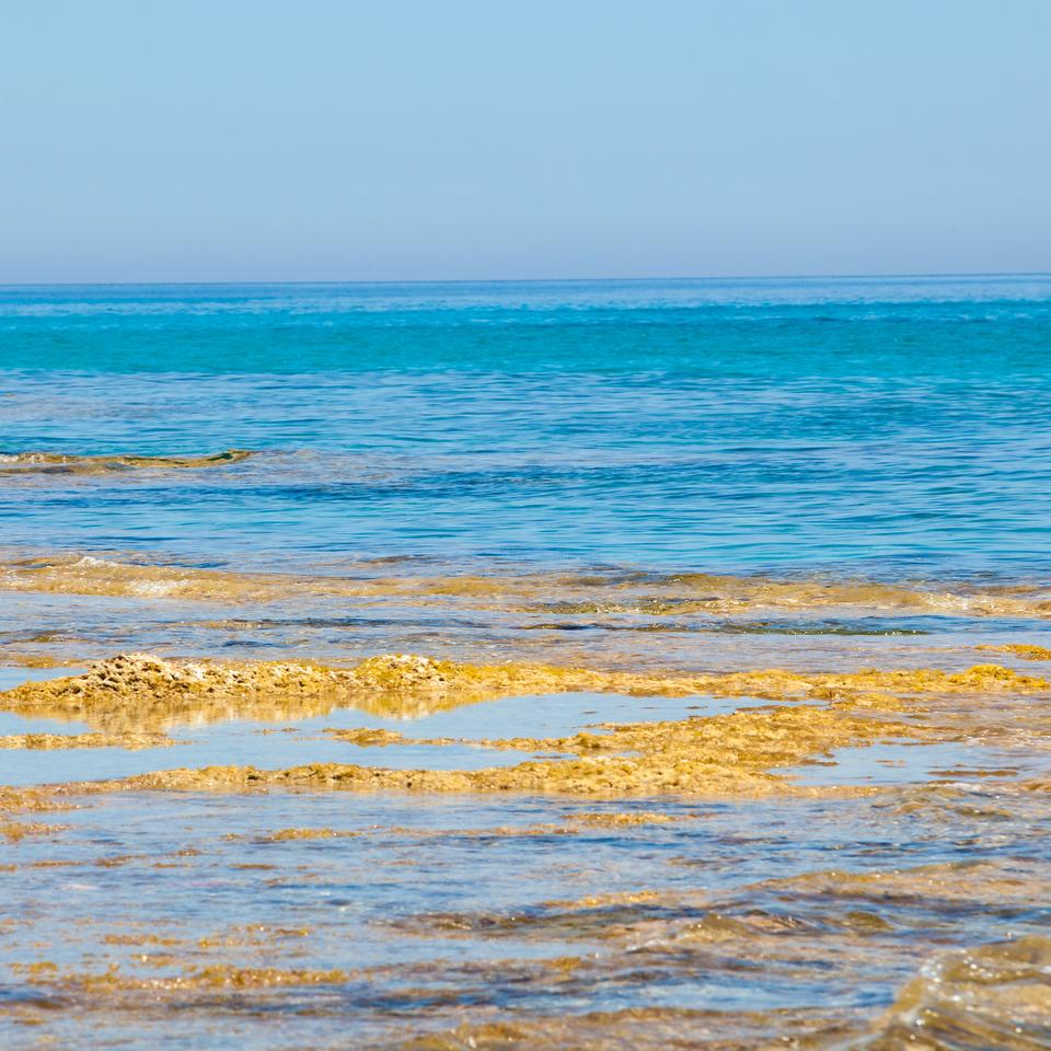Majorca Island. Mallorca.  Island landscape.