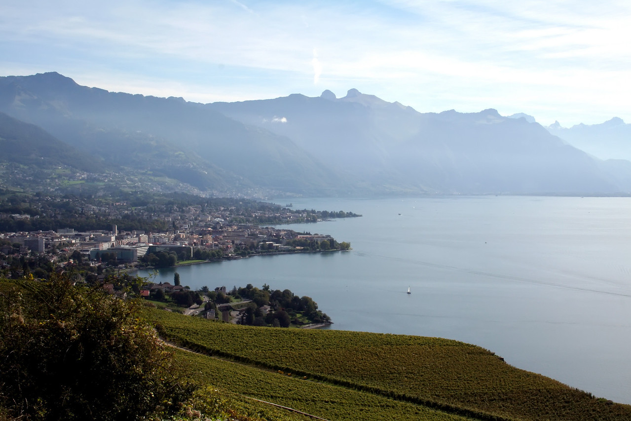 Swiss countryside with panoramic view of town and lake