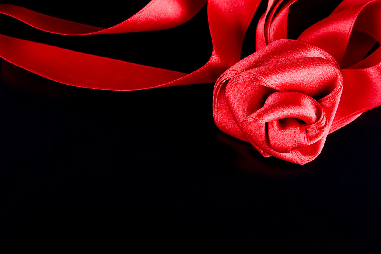 silk red rose on the black background