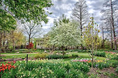 Missouri Botanical MOBOT (1 of 1)