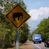 Elephant crossing (didn't see any elephants though)