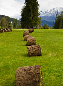 Kaslo Golf Course Turfing_HI_7202