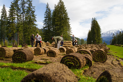 Kaslo Golf Course Turfing_HI_7201
