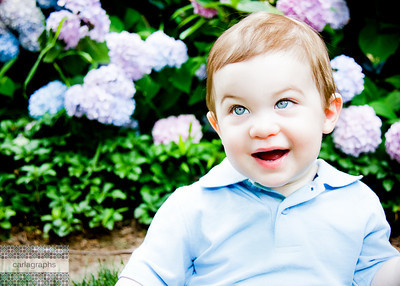 Colby in the Hydrangeas bright-