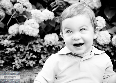 Colby in the Hydrangeas bw-