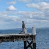 Kauri Point Jetty