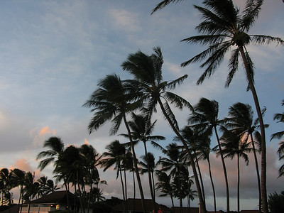 Kauai, Hawaii October 2008