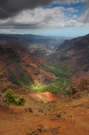 Waimea Canyon light