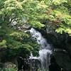 Japanese Garden, Kelly Park, San Jose, CA