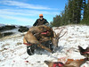 Transporting a spike elk on the ATV.