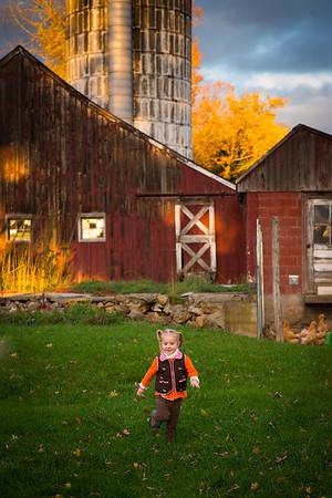 Maggie at Levesque Farm