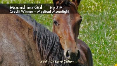 Hip 319 Moonshine Gal