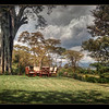 The lawn at Loldia House, Lake Naivasha, Kenya.