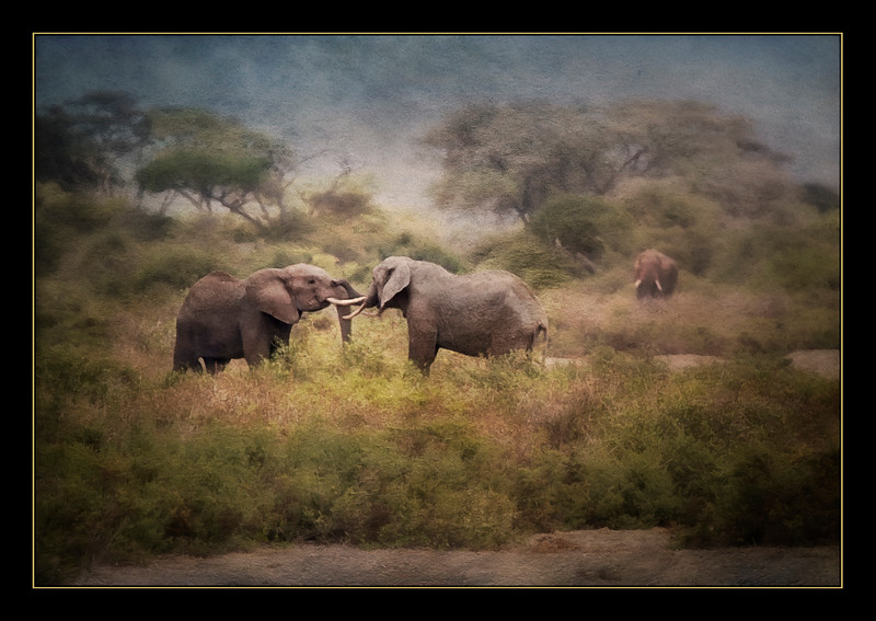 Elephant friends, Amboseli National Park, Kenya, as an oil painting.