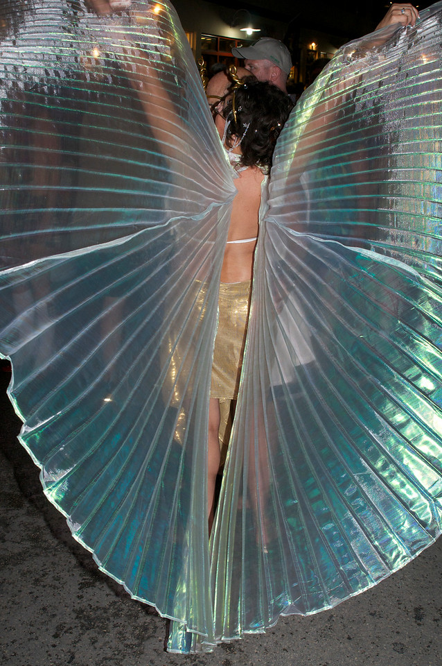 Iridescent wings on parade.
