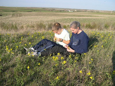 Mom and Wildflowers: We're intrigued by the wildflowers growing in the smalll patch of native grassland on Dad's land.