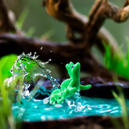Kinder Basilisk Lizard 1x1
