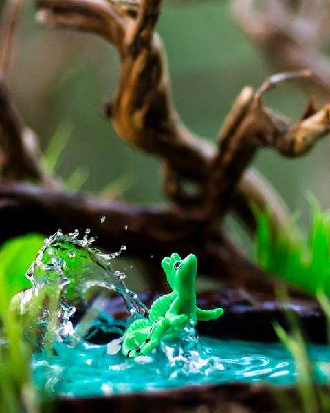 Kinder Basilisk Lizard 8x10 Vertical