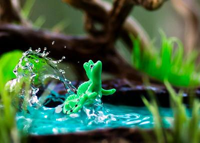 Kinder Basilisk Lizard 5x7 Horizontal