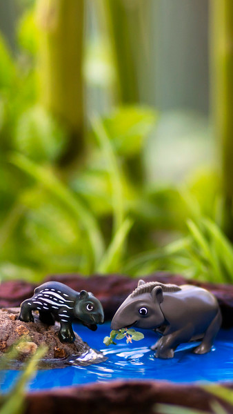Kinder Tapir 16x9