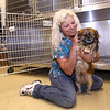 Kingsport Animal Shelter employee Darlene Fluce sits with a new resident at the animal shelter on Monday. Fluce is one of a handful of employees left at the shelter after three, including director Tracy Raines, were fired on Friday. Photo by Erica Yoon