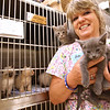Ginny Mowell, director of the Kingsport Animal Shelter, holds kittens inside the cat room at the shelter. It is Cat/Kitten month and the shelter is already at full capacity. Photo by Erica Yoon