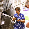 Kingsport Animal Shelter employee Donna Davidson and director Ginny Mowell move in kittens and a mother cat at the shelter in the cat room. The shelter is at maximum capacity in the cat room. Photo by Erica Yoon