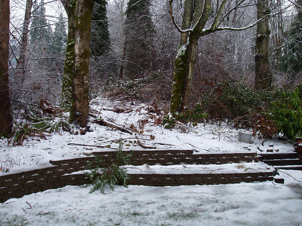 Kirkland Snow