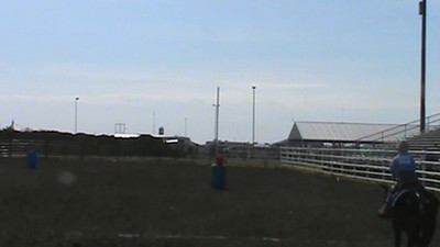 Flag Buckwheat