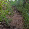 Muddy trails. Steep and slippery.