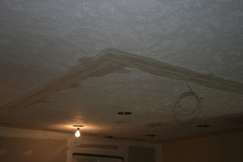 mud on ceiling in kitchen ( ?)