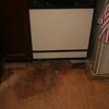 little water damage to sub-flooring.. (I swear it wasn't me :)