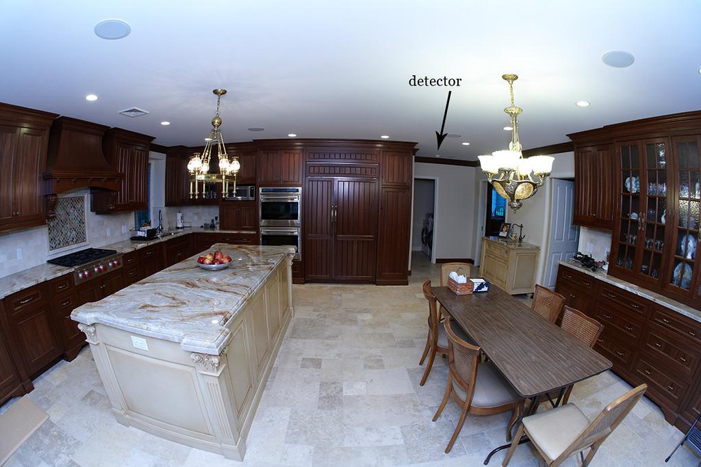 kitchen detector 2