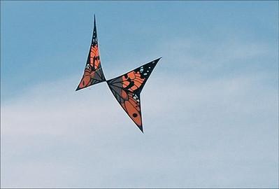 Kite Show, OM-2,  Tam 80-200/2.8  Kod160 VC-2