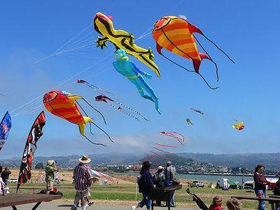 KiteFest