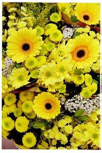 99-11-22Paris Bouquet