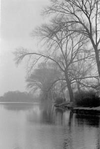 Thames and Trees ( b+w film