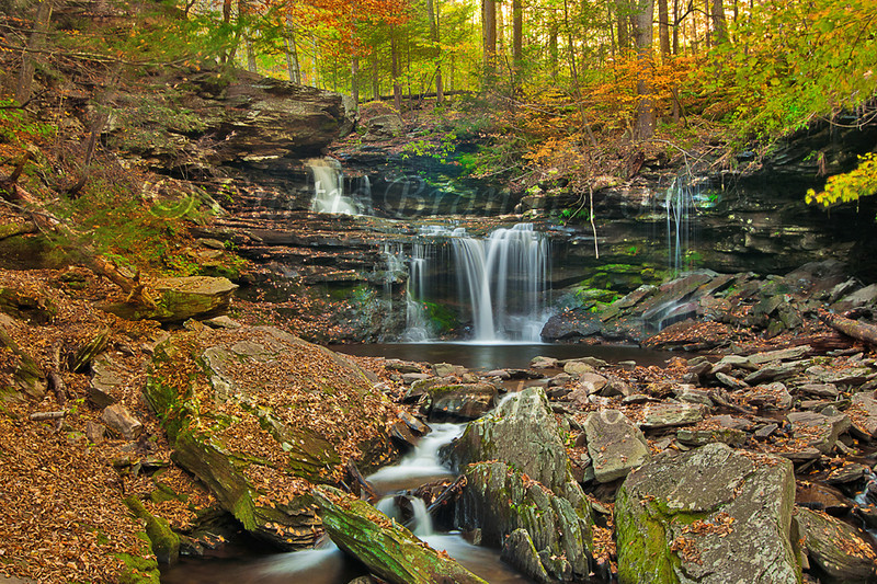 Ricketts Glen - Ricketts Falls w/ BN Singh