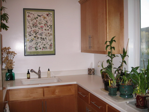 Utility/laundry room (also home to my collection of orchids).