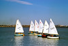 Sailboats on the Potomac at the Sailing Marina c. 1968 (lab processed)