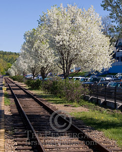 May 17, 2008 - RR Tracks Along Weirs Beach, Laconia NH