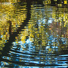 ripples in blue and gold