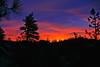 sunrise arrowhead 25