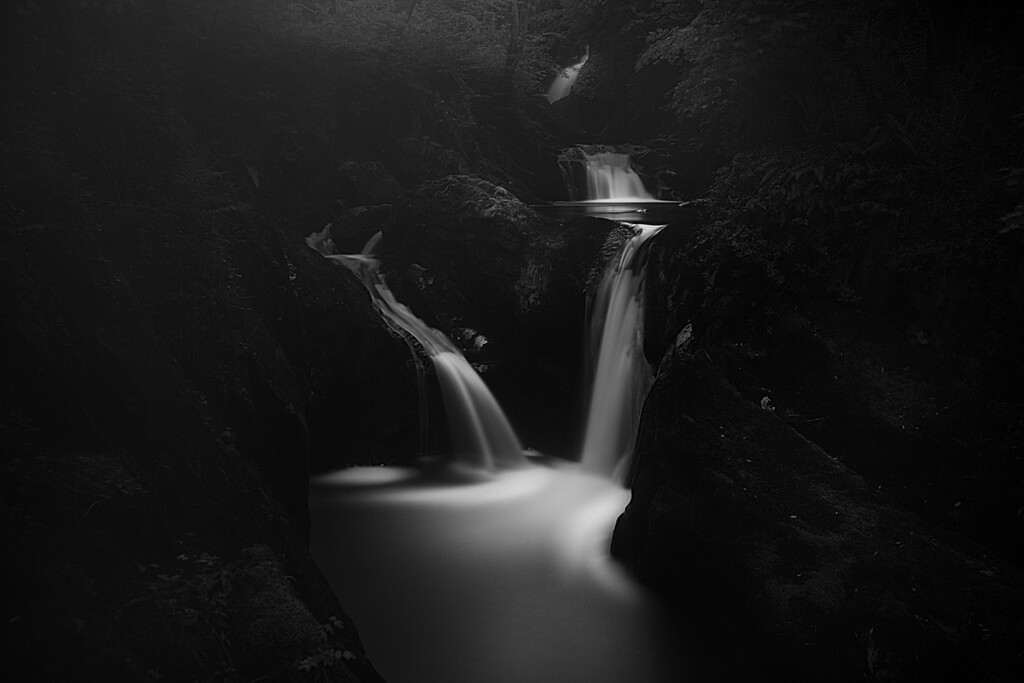 Black rapids