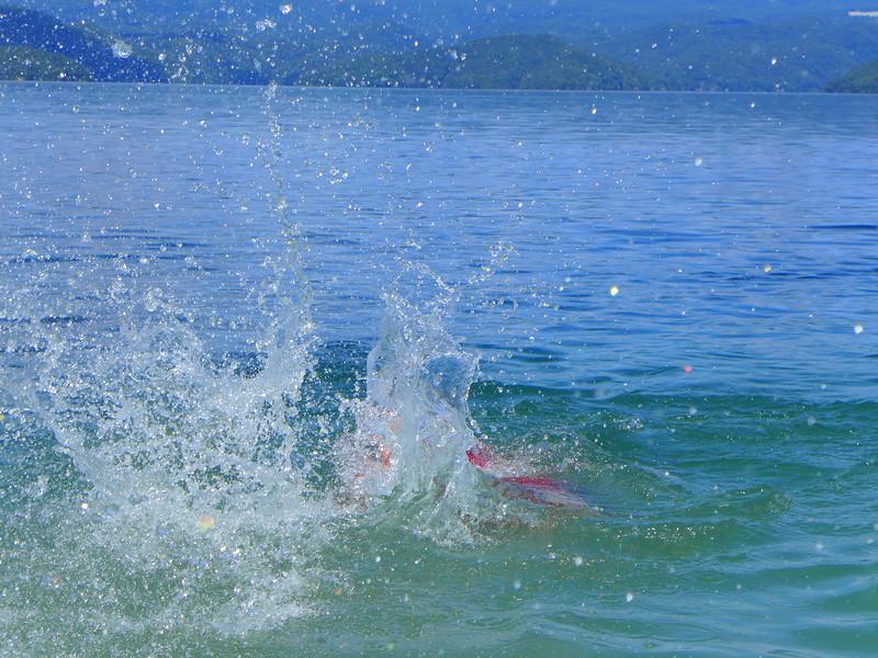 Someone, making a huge splash!